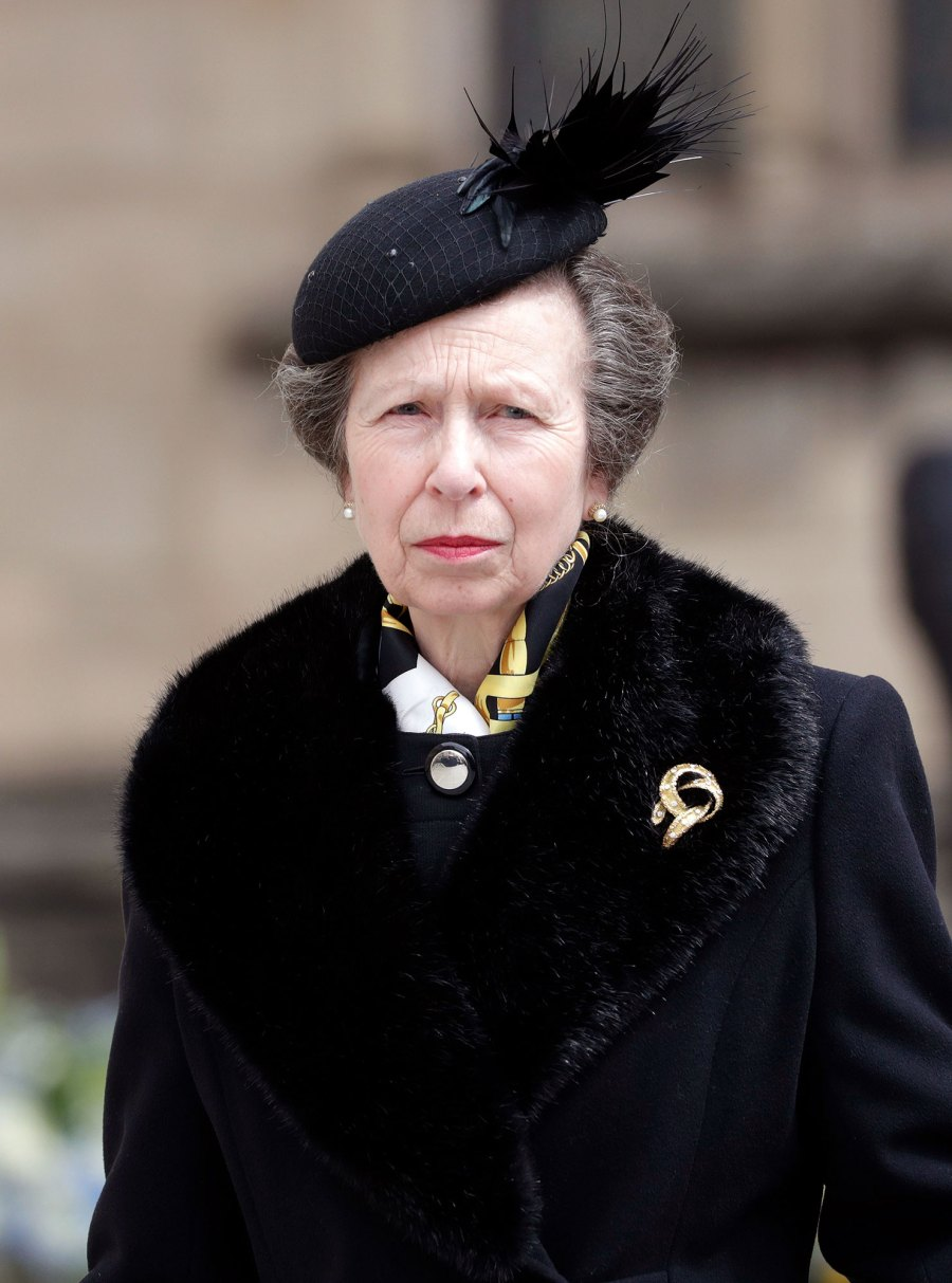 Princess Anne Where Do Harry and Meghan Stand With the Rest of the Royal Family