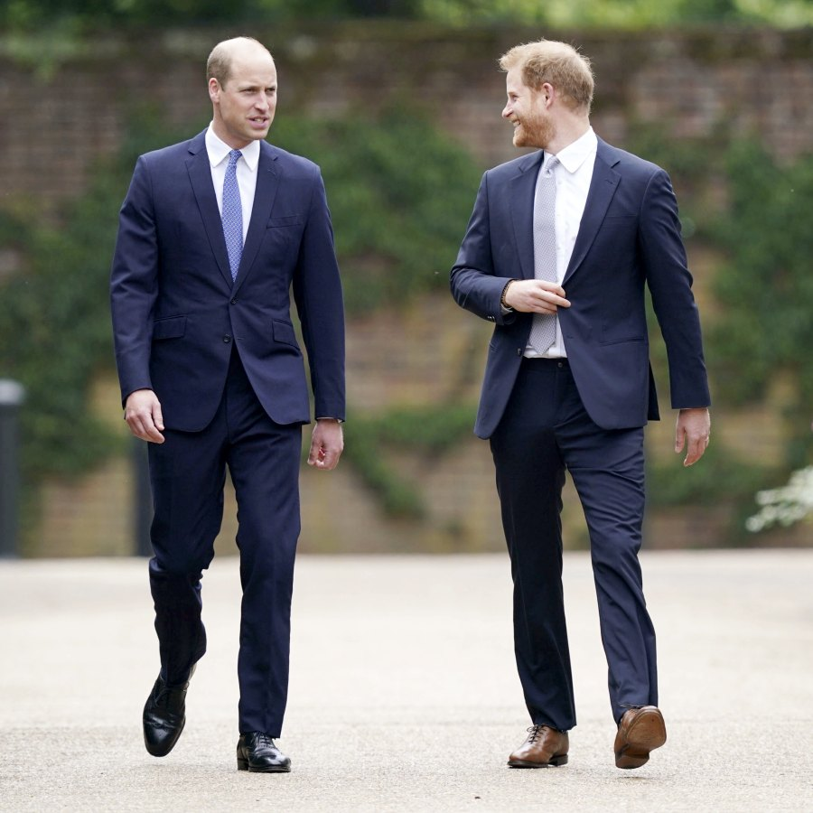 Prince William Prince Harry All Must-See Photos Princess Diana Statue Unveiling Event