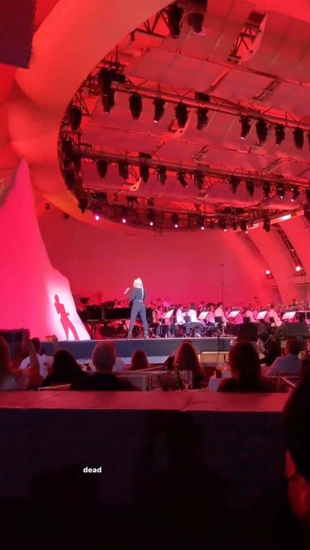 Ariana Grande Husband Dalton Gomez Enjoy Date Night Stunning Concert