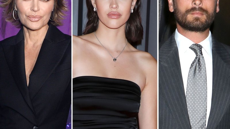 Everything Lisa Rinna, Harry Hamlin Have Said About Amelia and Scott