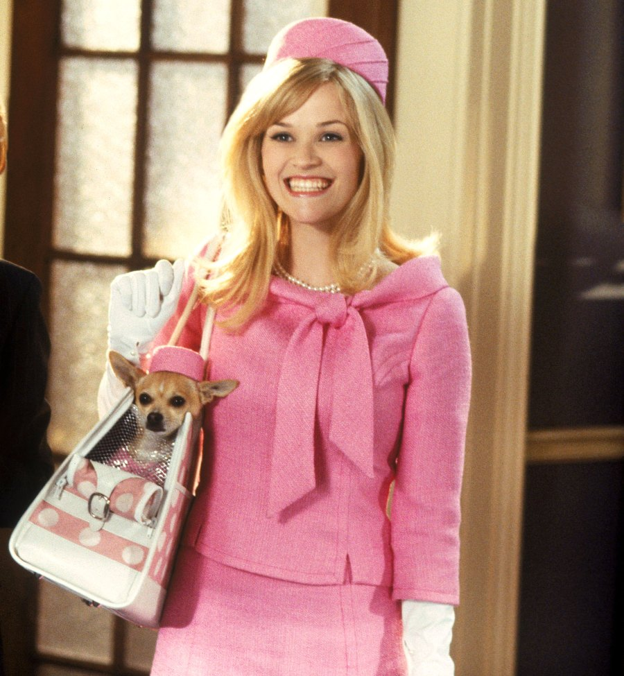 Reese Witherspoon Legally Blonde Google