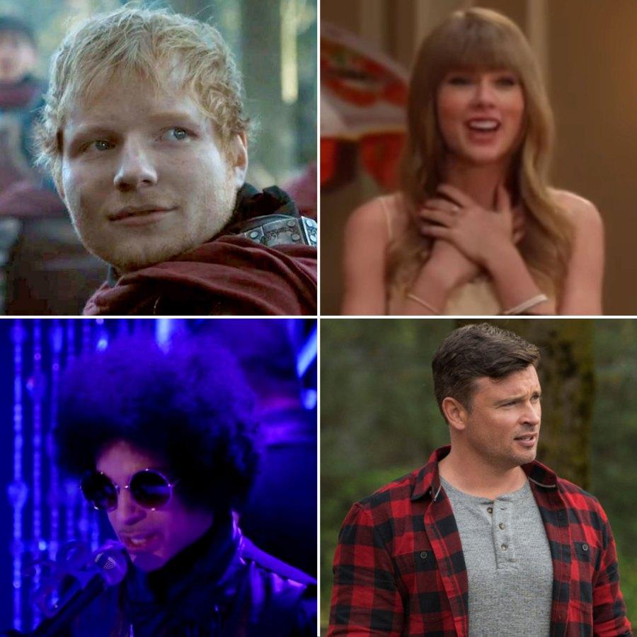 Surprising Celebrity TV Show Cameos