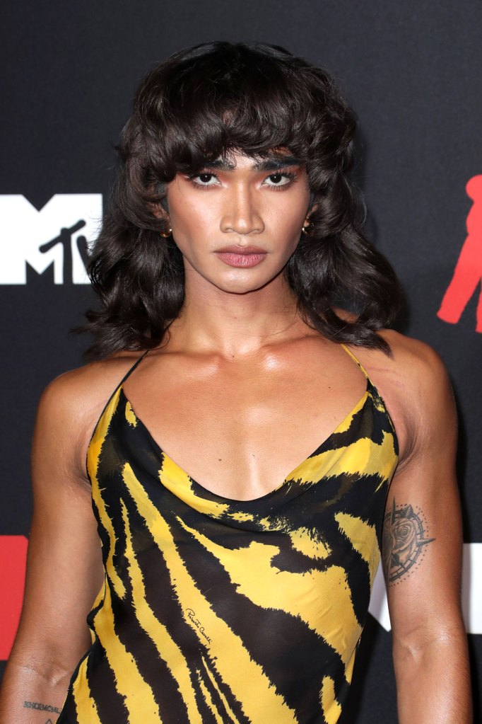 Bretman Rock Wears Same Zebra-Print Dress to 2021 VMAs That Aaliyah Wore in 2001 02 2021 VMAs