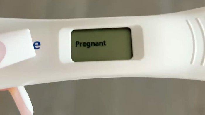 Miembros de la familia Inline Kardashian-Jenner felicitan a Kylie Jenner después de la confirmación del embarazo