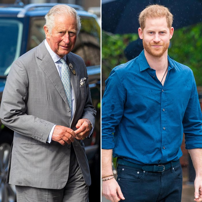Prince Harry Has Finished Writing his Memoir and the Contents Will Make Prince Charles Want to Hide, Royal Expert Says