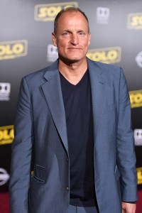 Woody Harrelson Punched Man Self Defense After DC Altercation