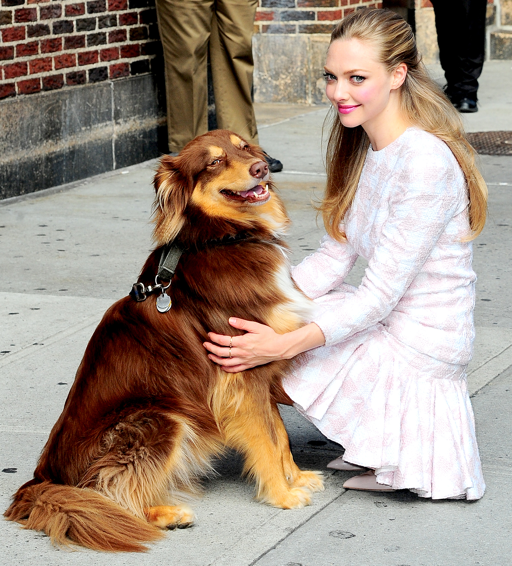 """Amanda Seyfried with her dog visits """"Late Show With David Letterman"""" at Ed Sullivan Theater on July 30, 2013 in New York City."""