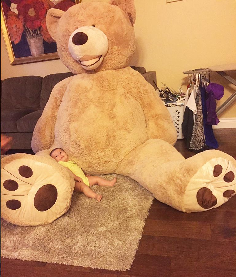 gigantic Costco teddy bear