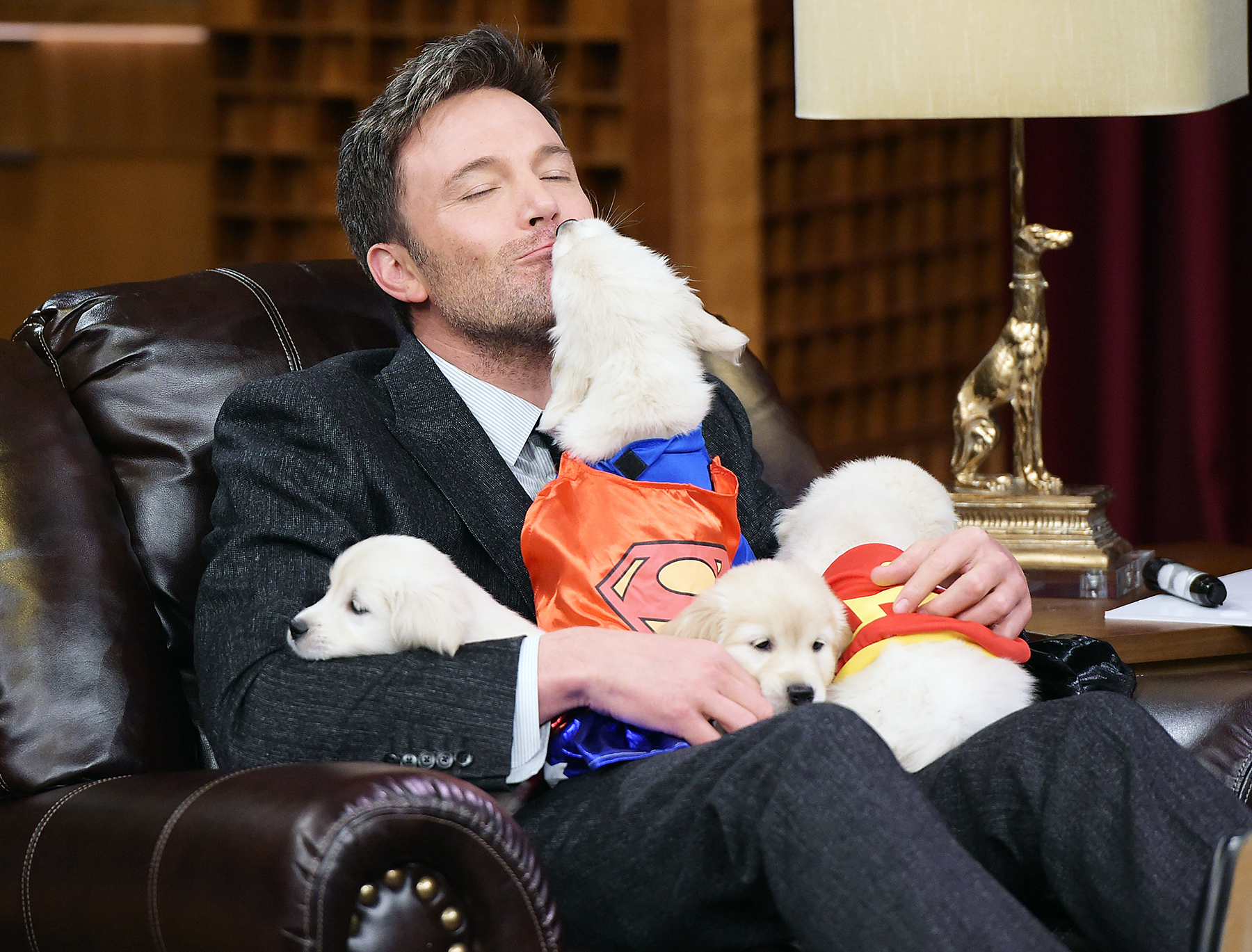 Ben Affleck with puppies