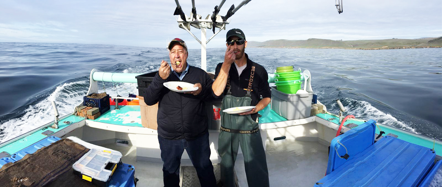 """Breakfast at sea,"" captioned Zimmern of this shot from Morro Bay, California."