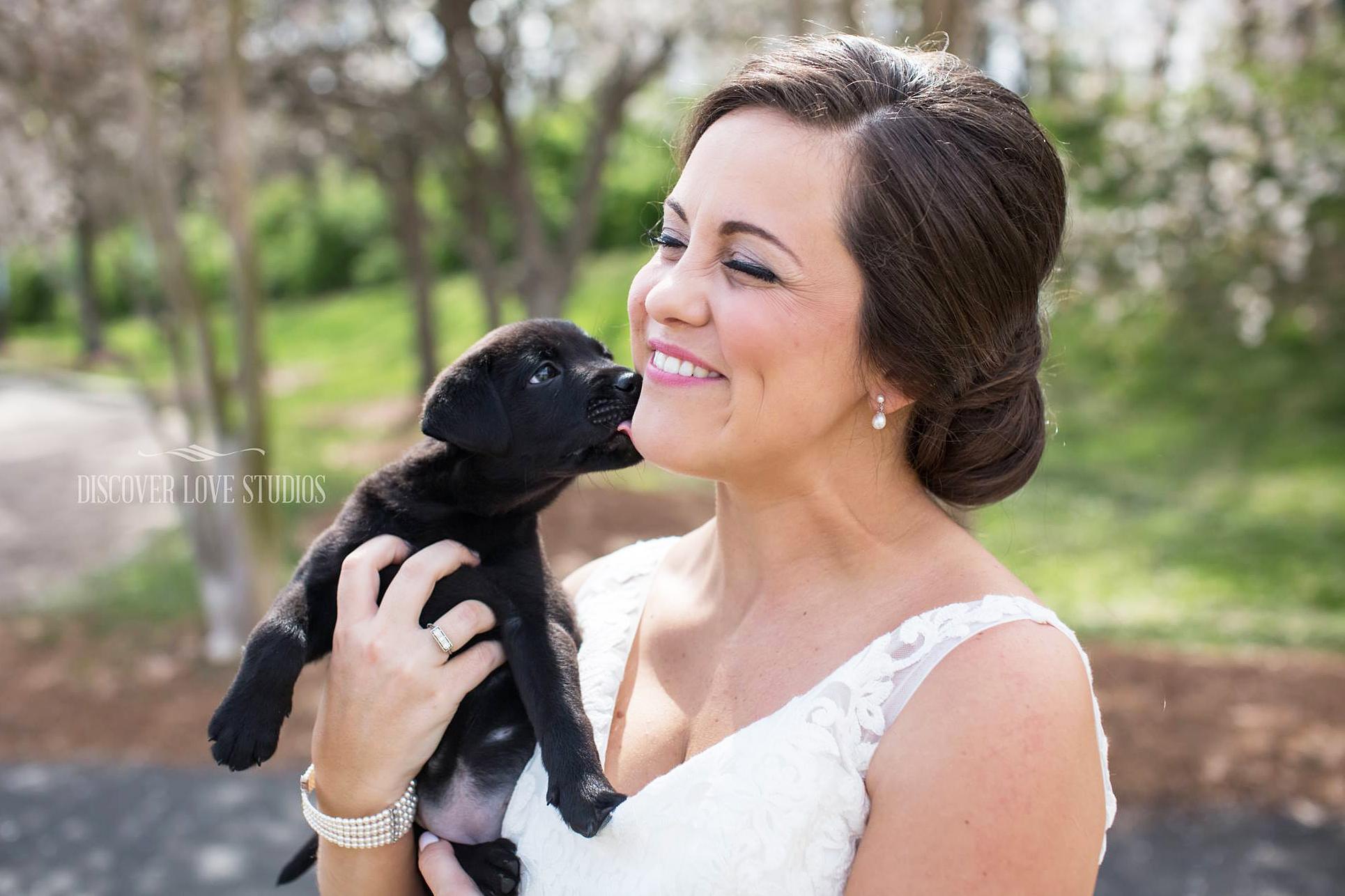 bride puppy