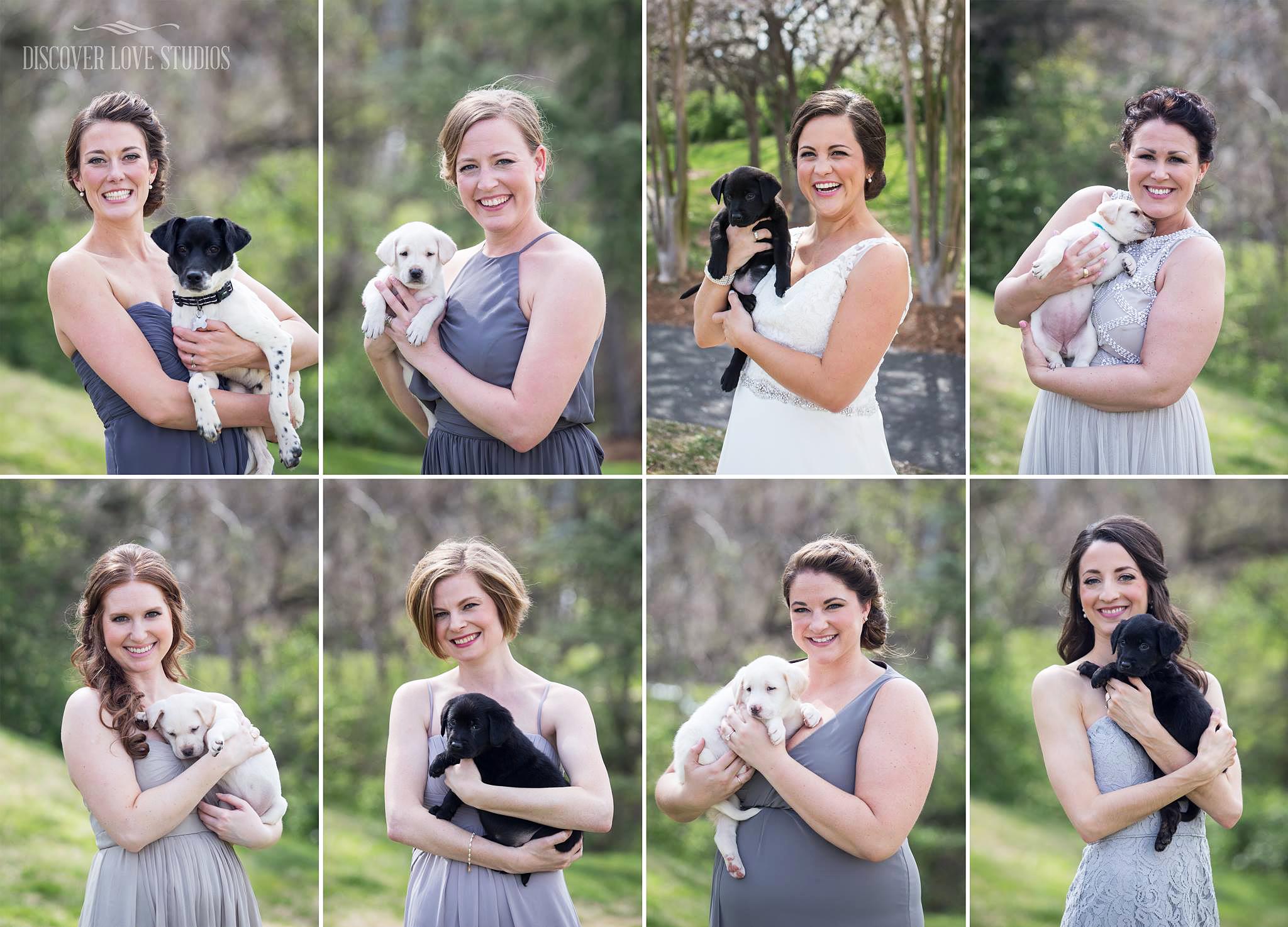 Bridesmaids puppies