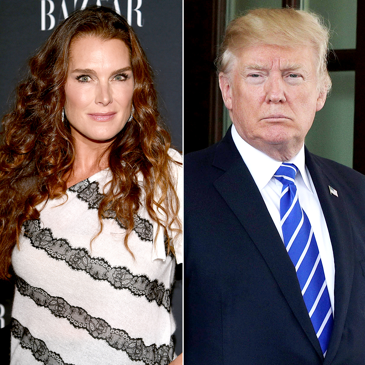 Brooke Shields and Donald Trump
