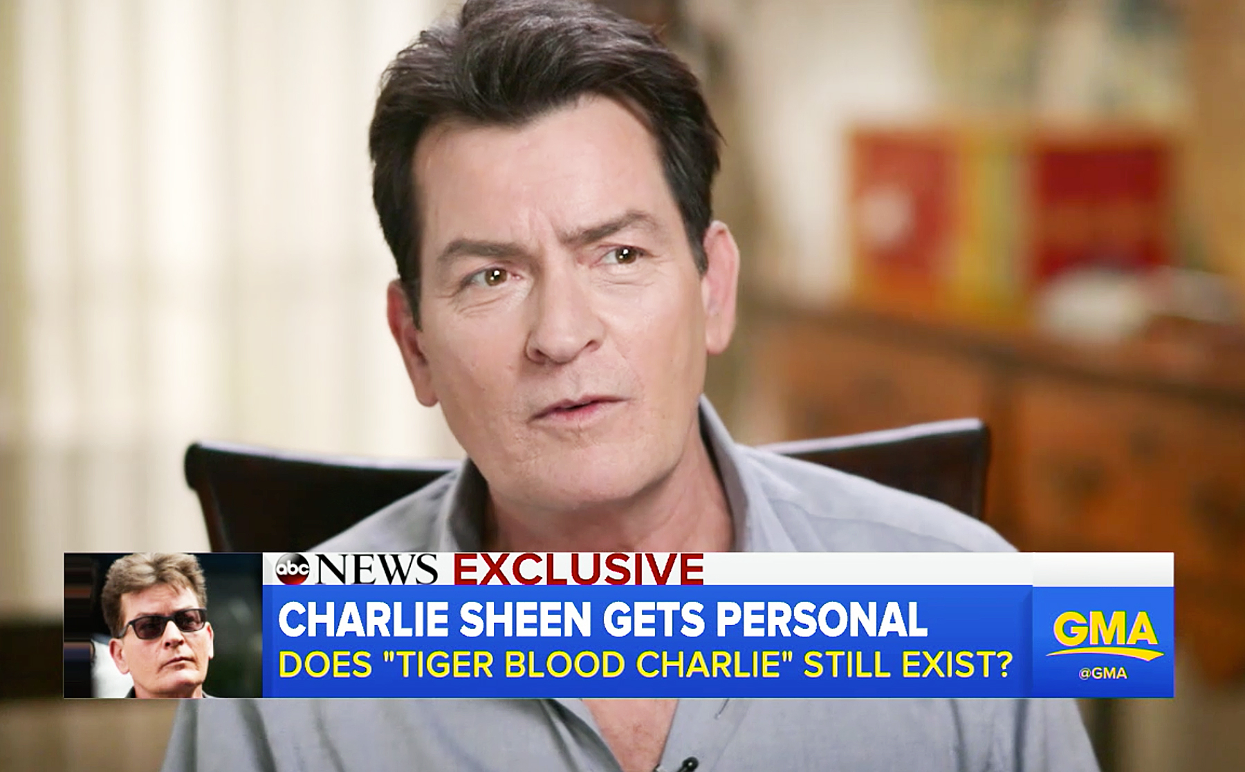 Charlie sheen blames roid rage for tiger blood phase charlie sheen good morning america thecheapjerseys Image collections
