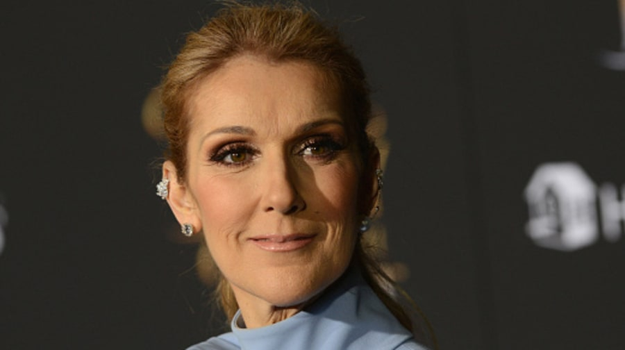 Celine Dion: It's 'Too Soon' to Think About Dating