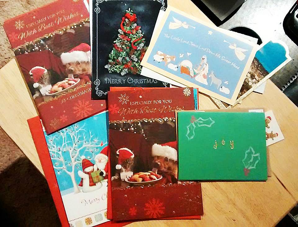 Hailey Rodenhiser Christmas cards