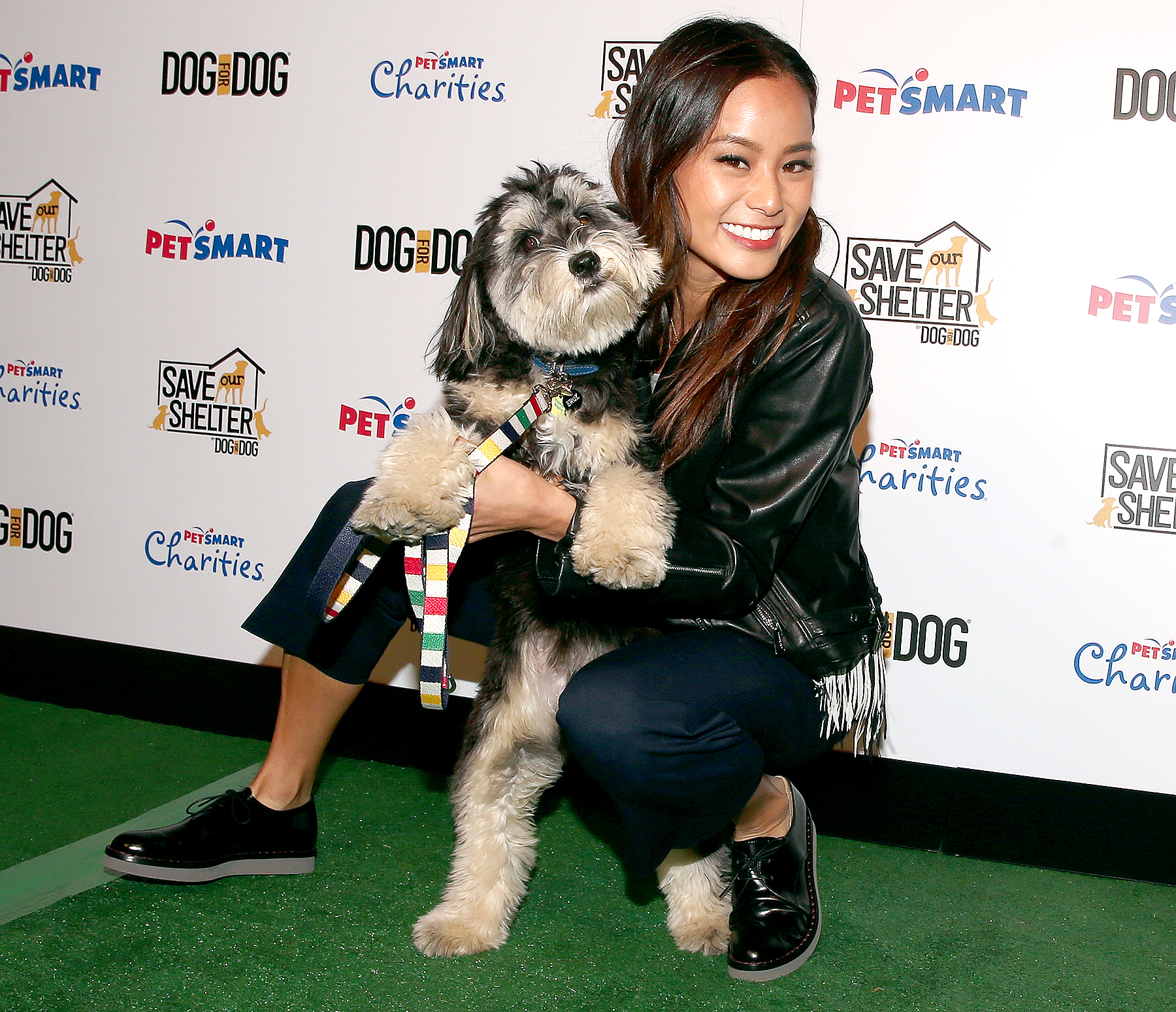 Jamie Chung and her rescue dog Ewok attend the launch of DOG for DOG movement -- Buy One Give One to help feed animals in need at The Amanda Foundation on November 10, 2015 in Beverly Hills, California. Christopher Polk/Getty Images for Dog For Dog