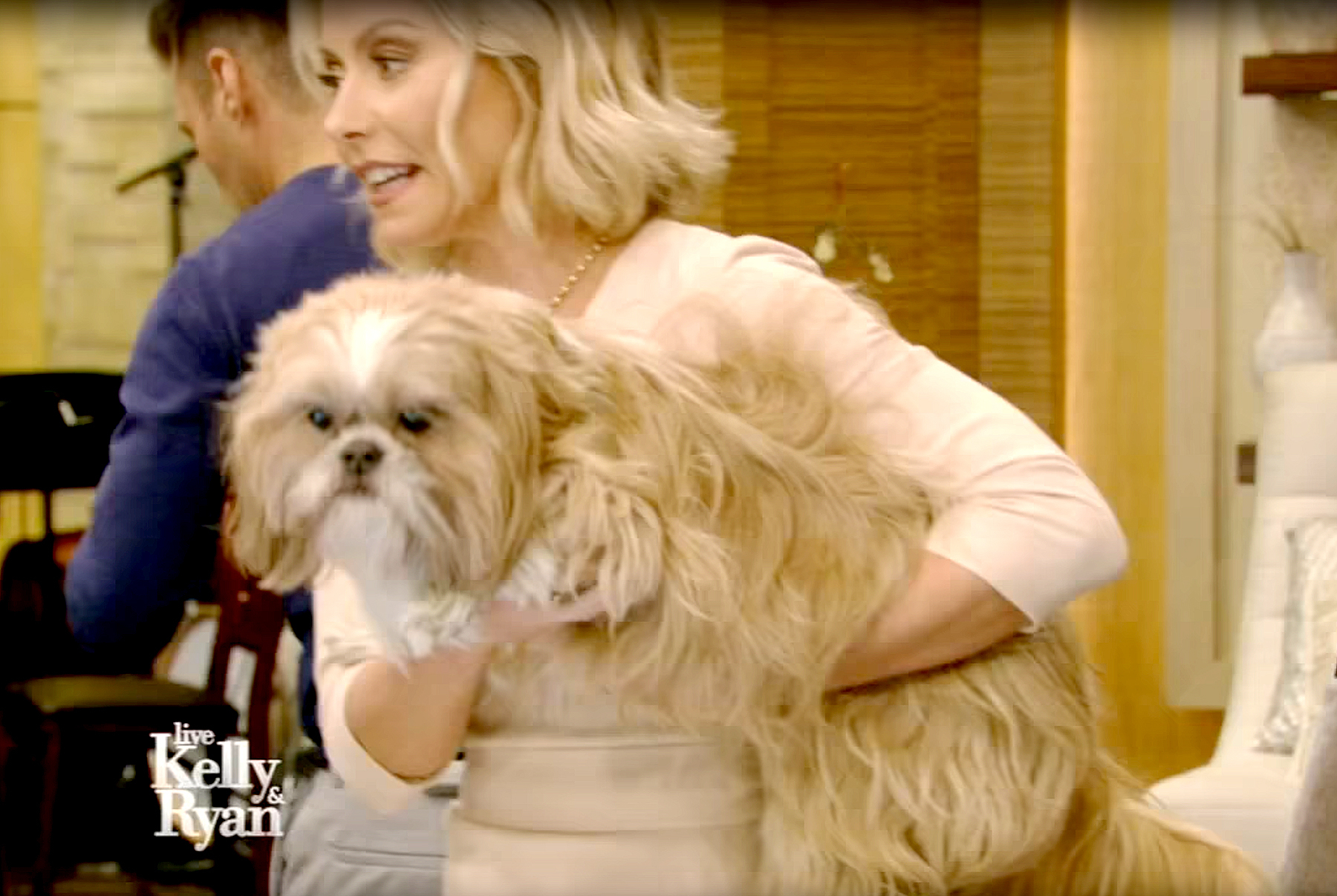 Kelly Ripa and Chewie