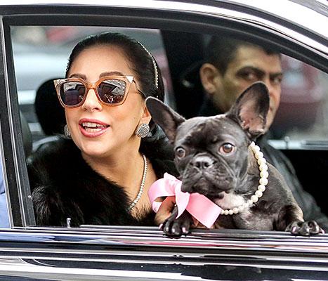 Lady Gaga and Asia - car