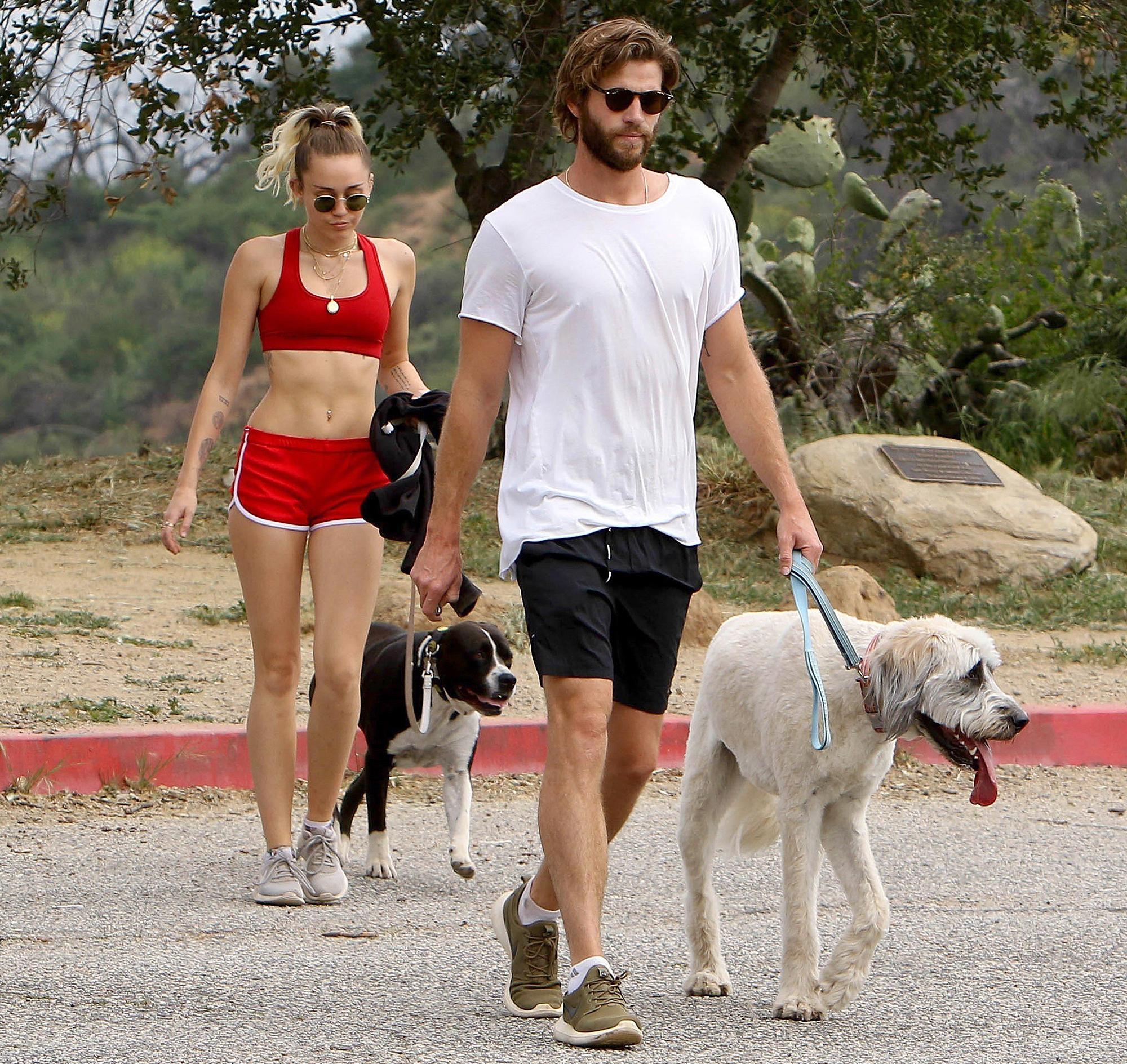 Miley Cyrus Liam Hemsworth dogs