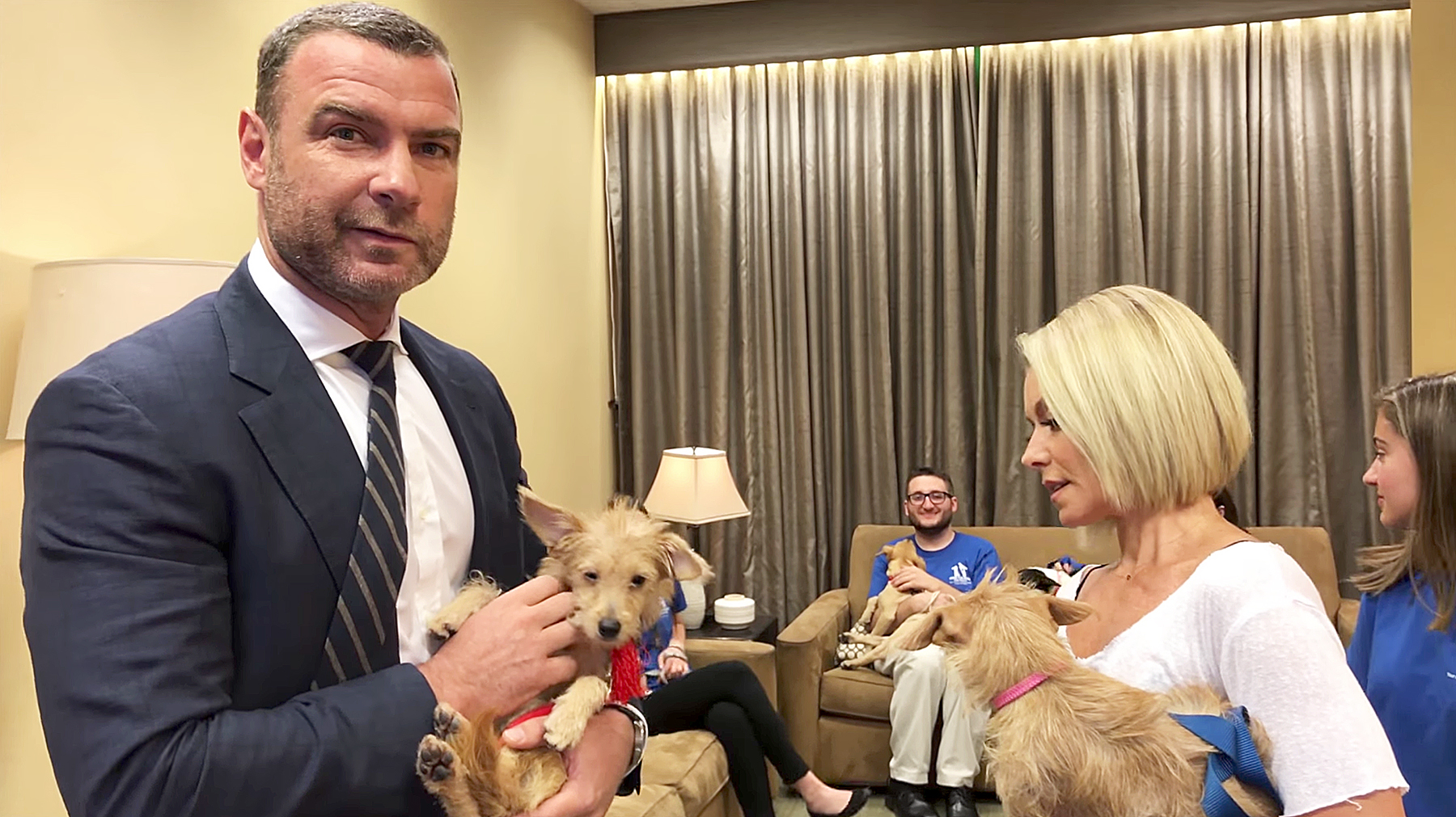 Liev Schrieber Kelly Ripa puppies hurricane