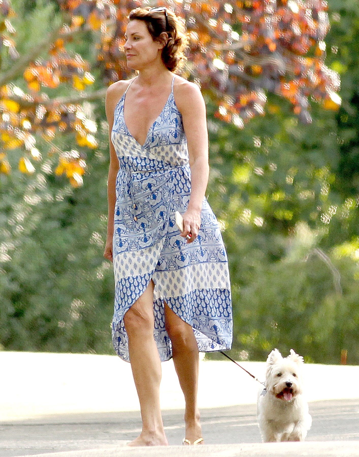 Countess Luann De Lesseps walking her dog with a friend in the Hamptons on August 23, 2017. MATT AGUDO/INSTARimages.com