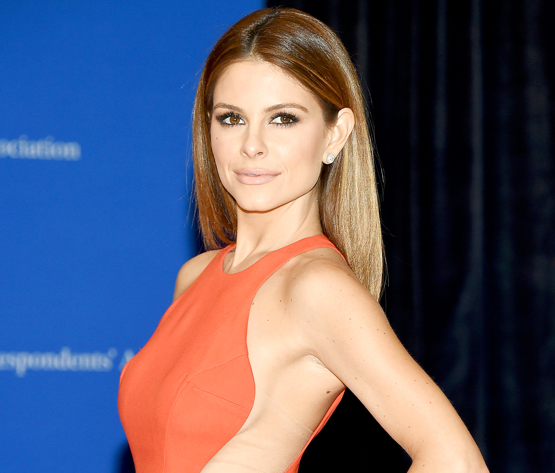 Maria Menounos attends the 101st Annual White House Correspondents' Association Dinner at the Washington Hilton on April 25, 2015 in Washington, DC.
