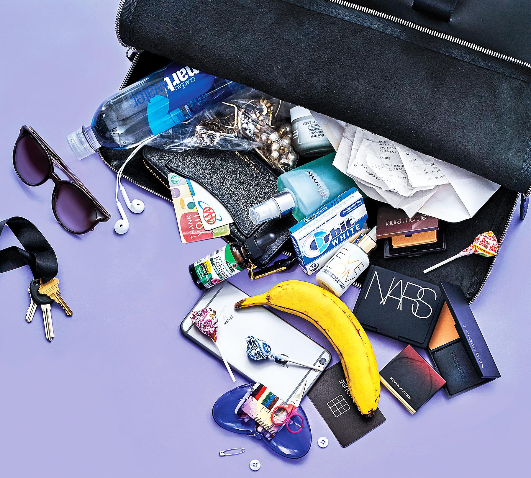 Mischa Barton's bag