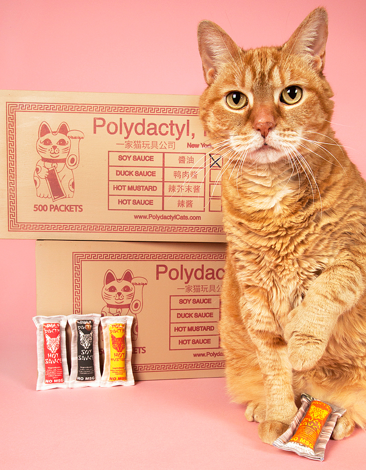 Polydactyl Cats' Chinese Food Takeout Catnip Sauce Packets.