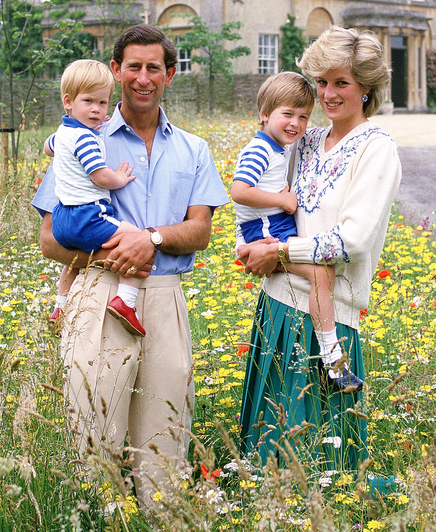 Prince Charles, Prince Harry, Prince William, Princess Diana