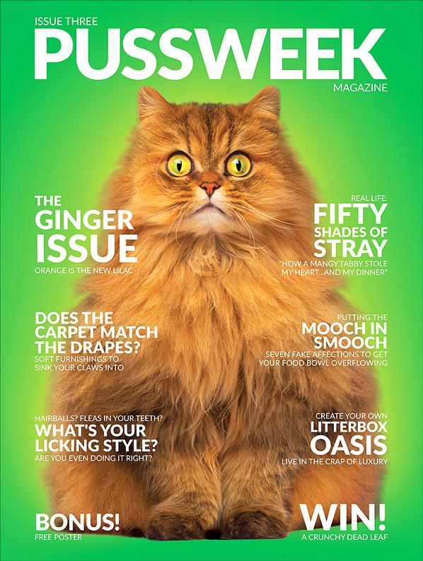 Pussweek Magazine