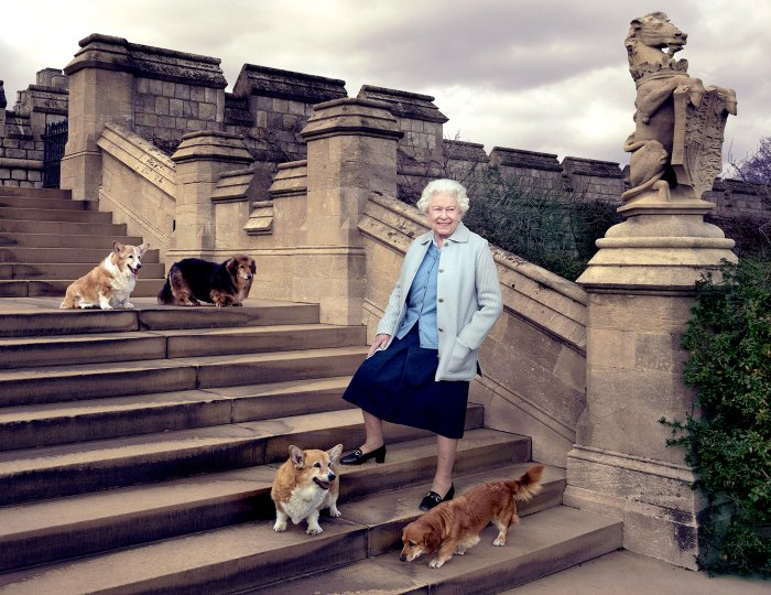 The Queen is seen on steps at the rear of the East Terrace and East Garden with four of her dogs: clockwise from top left Willow (corgi), Vulcan (dorgie), Candy (dorgie) and Holly (corgi).