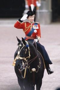 queen_horse-1e6de885-71cd-4d34-af7e-574d952b314e