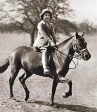 queen_horse-4654c579-9ed6-4366-b12f-1c64404546aa