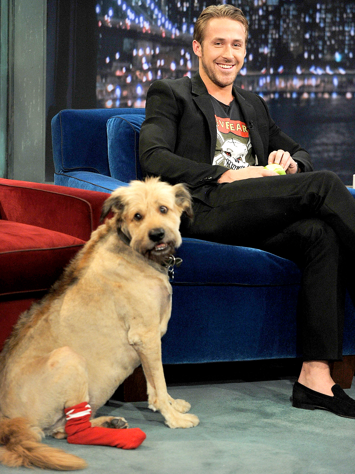 """Ryan Gosling along with his dog George visits """"Late Night With Jimmy Fallon"""" at Rockefeller Center on July 20, 2011 in New York City."""