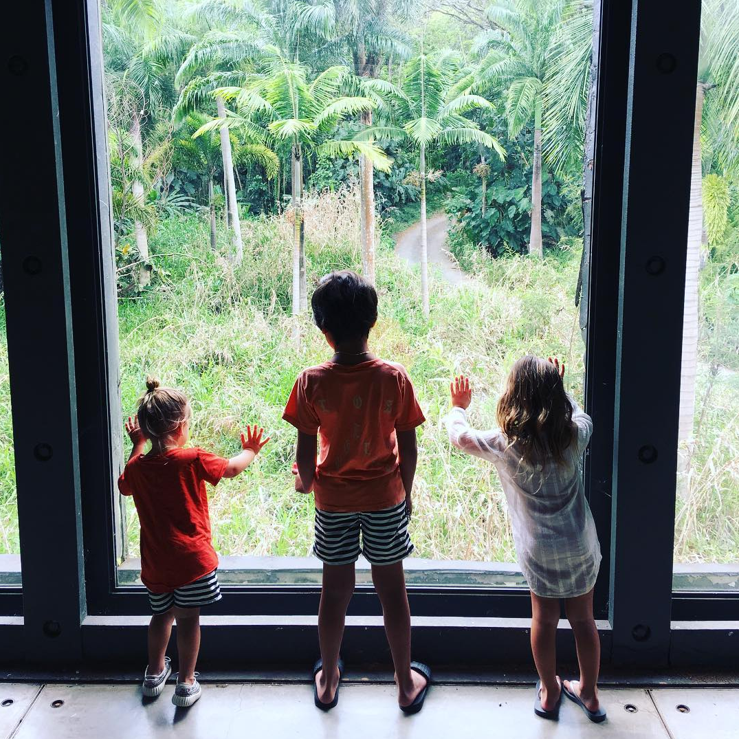 "Mason, Penelope and Reign, checked out the tropical view during a family vacation to Hawaii. ""Life,"" dad Scott Disick wrote alongside the snap."