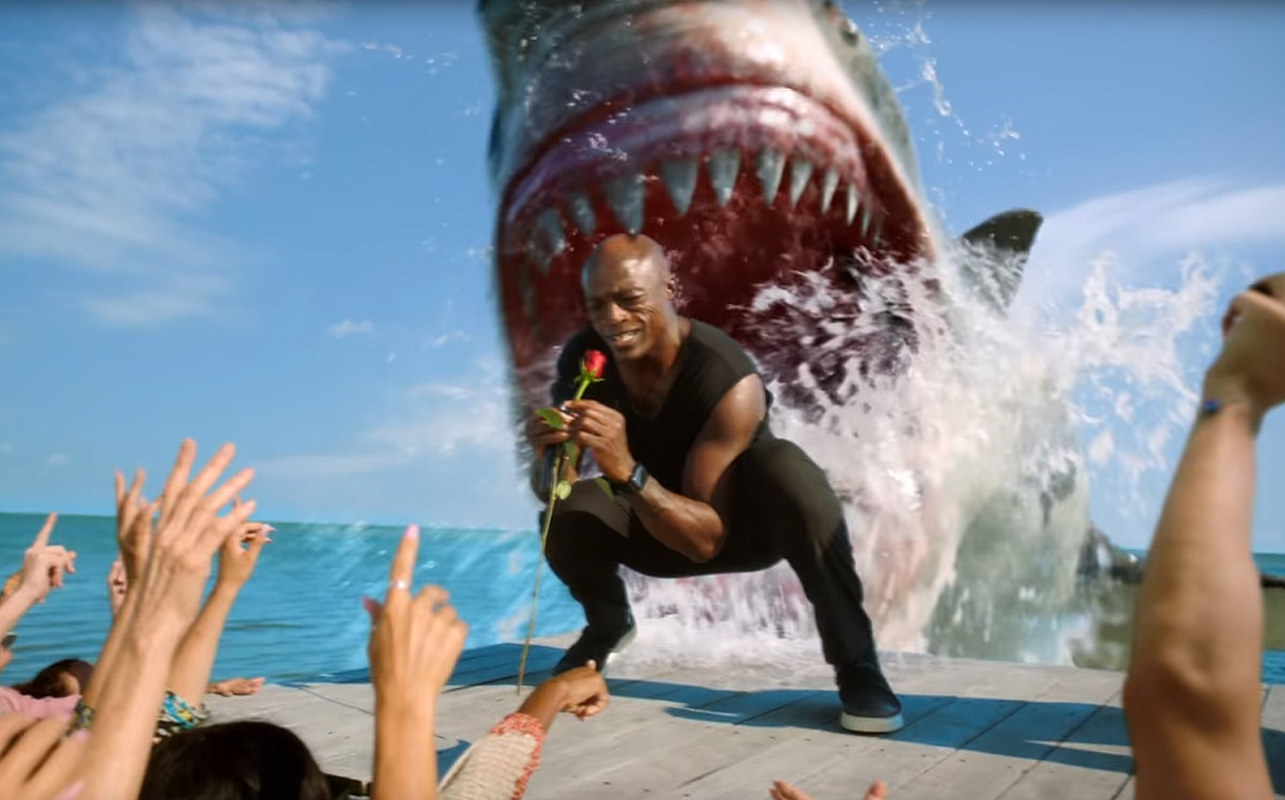 Seal Gets Attacked in Hilarious Shark Week Promo Watch