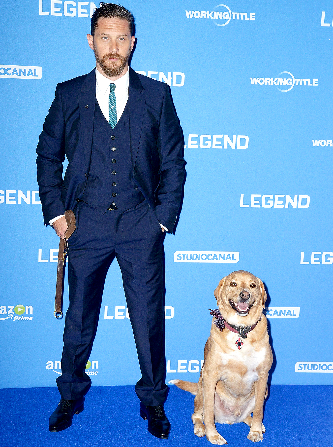 "Tom Hardy and his dog Woody attend the UK Premiere of ""Legend"" at Odeon Leicester Square on September 3, 2015 in London, England."
